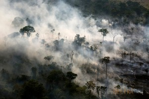 First-generation rainforest is cleared withe fire by farmers, south of Itaituba, Para State, Brazil.