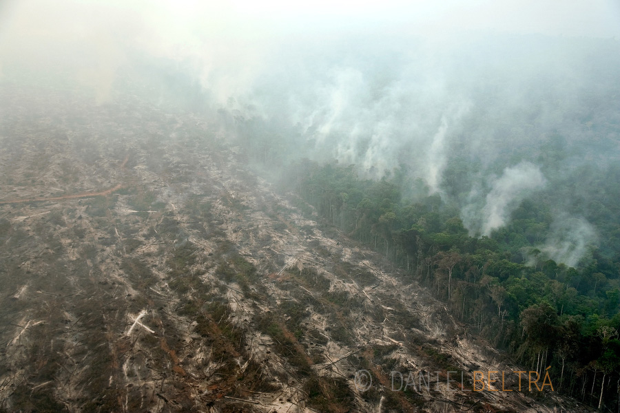 Rainforest is cleared with fire for soy and cattle farming between Alta Floresta and Claudia in Mato Grosso state, Brazil.