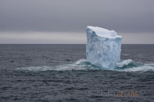 An iceberg drifts in the Ross Sea of the Southern Ocean.