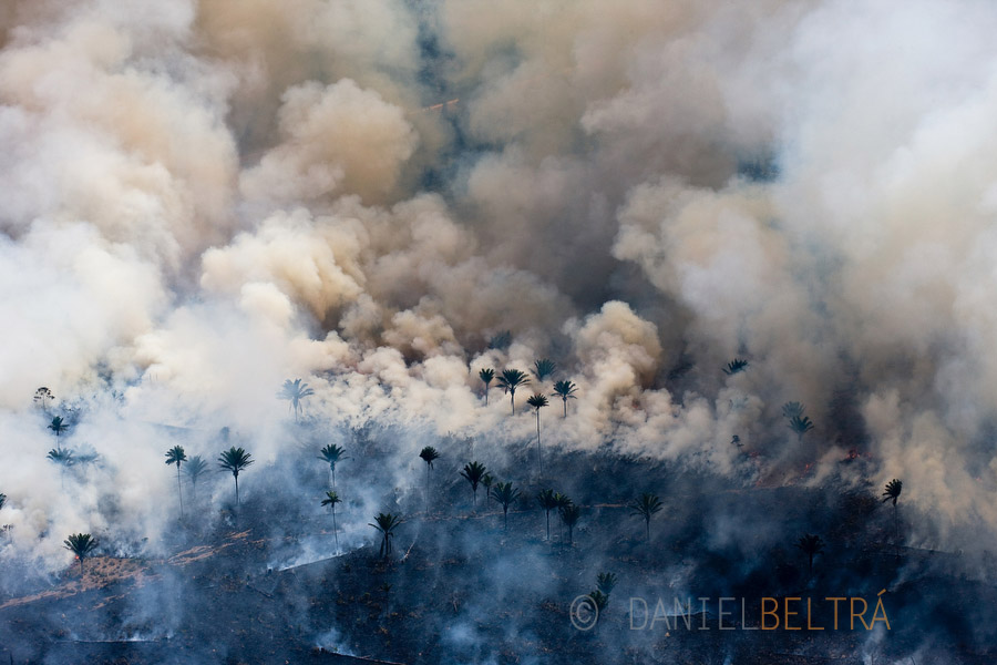 Man made fires to clear the land for cattle or crops. Sao Felix Do Xingu Municipality, Para State, Brazil.