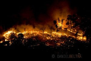 Fires burn the Amazon rainforest to clear the ground for cattle or crop farming in Sao Felix Do Xingu municipality, in Para State, Brazil.