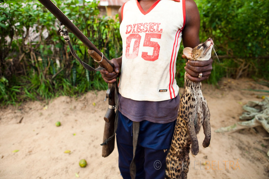 A hunter brings a genet to a market in Oshwe, Democratic Republic of Congo.