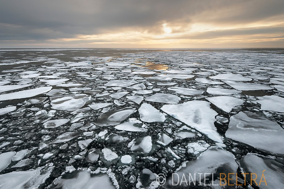Aerial view of Arctic Sea ice during its lowest-recorded extent in September 2012.